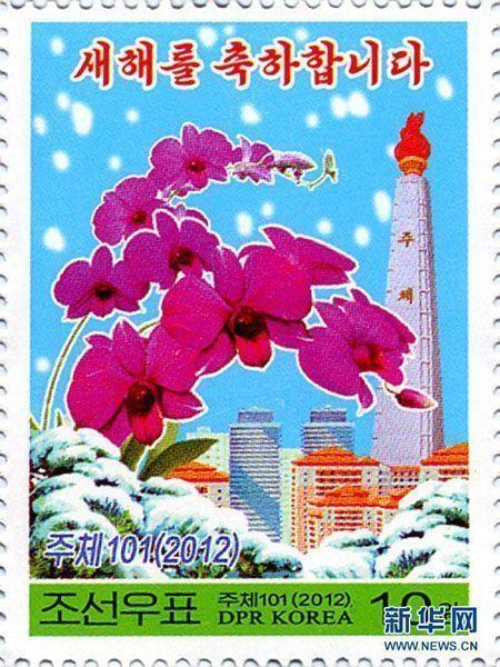 金日成花の画像 p1_24