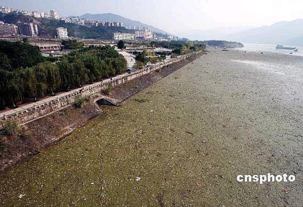 ■唸声中国/三峡ダムはゴミ溜め - 唸声のブログ 唸声のブログ ■唸声中国/三峡ダムはゴミ溜め